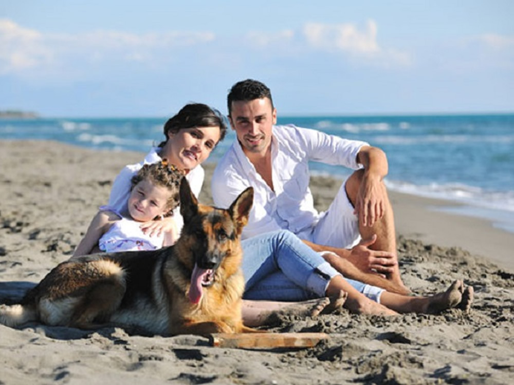 Family and dog on beach near where they are buying a vacation home